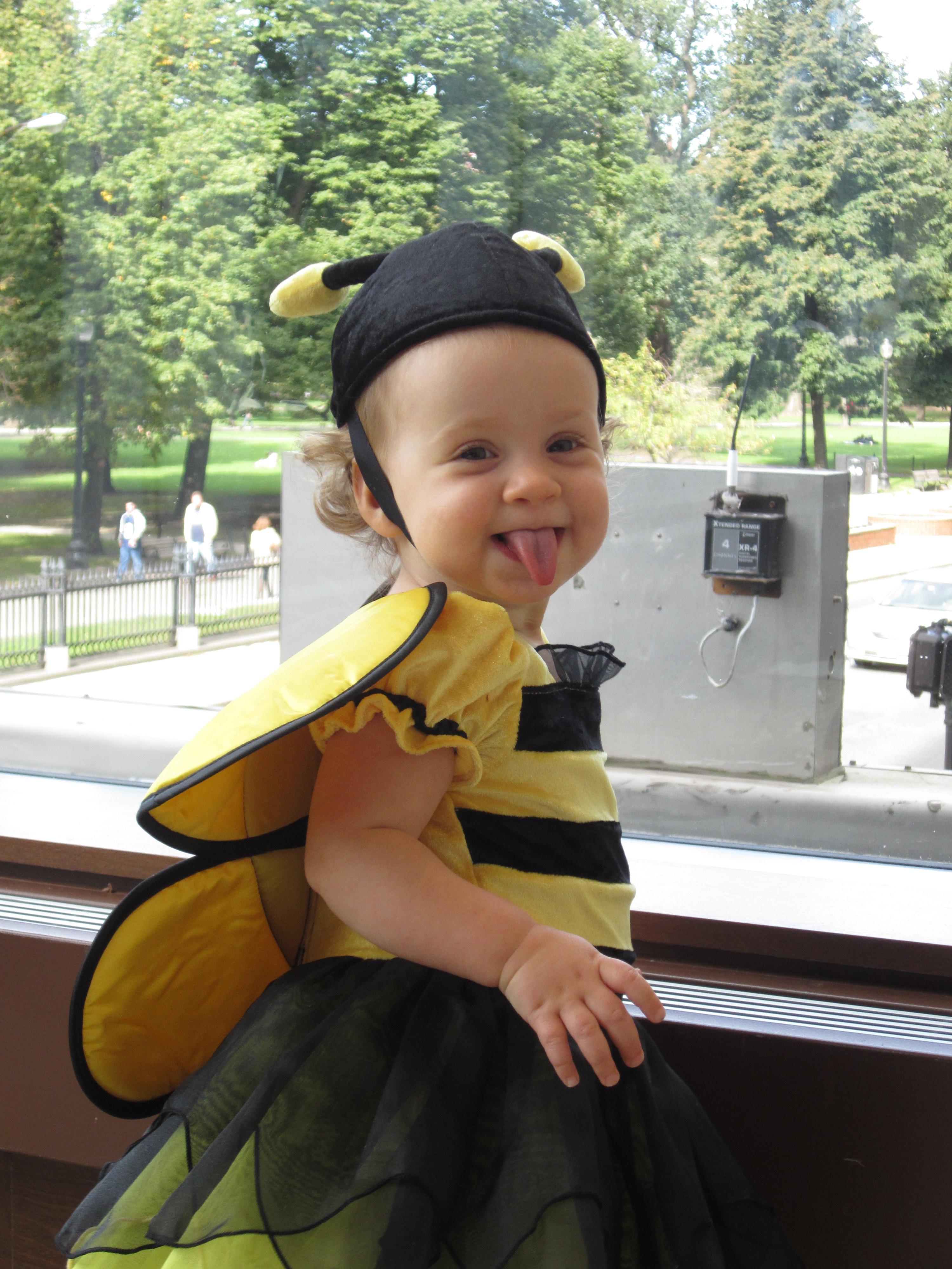 Halloween Happenings | Boston Babies