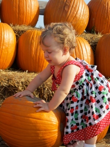 Pick up YOUR little pumpkin and take them out this season to enjoy a series of FREE family friendly events!